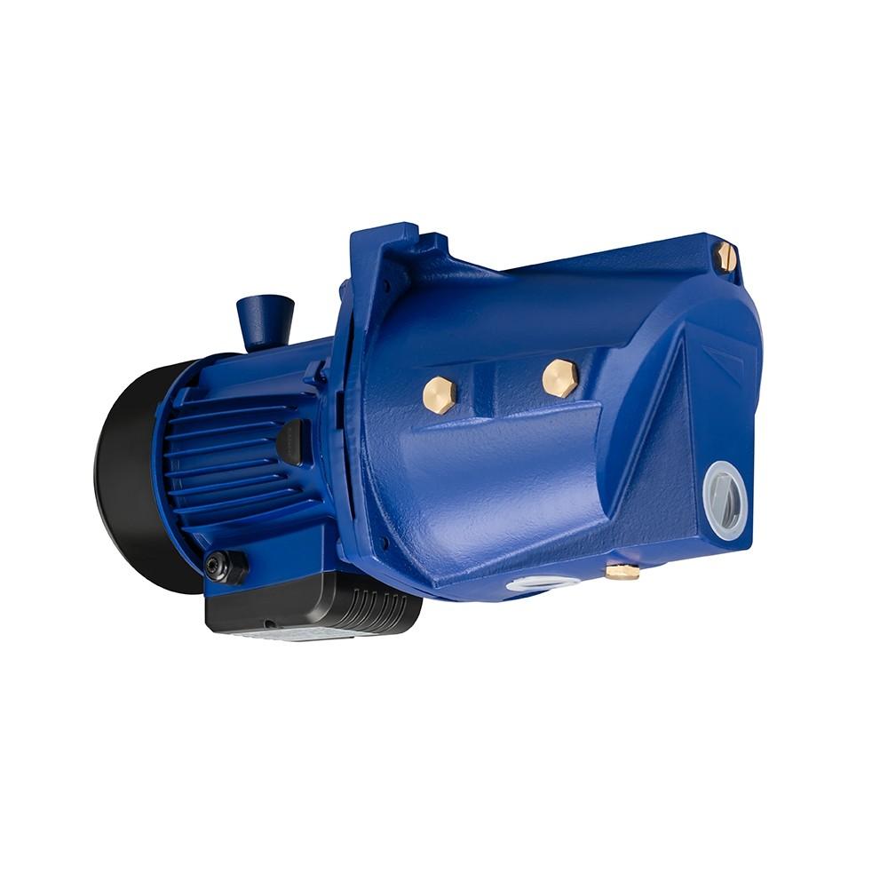 Vickers PVB45-RSF-20-CC-11-PRC Axial Piston Pumps