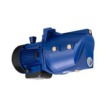 Vickers PVQ40AR01AB10A PVQ Series Piston Pump