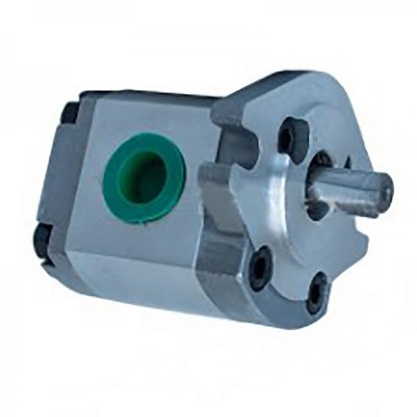 Kompass 50T-23 Fixed Displacement Vane Pumps #1 image