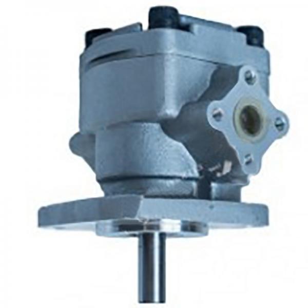 Kompass VQ35-108 Vane Pump #1 image