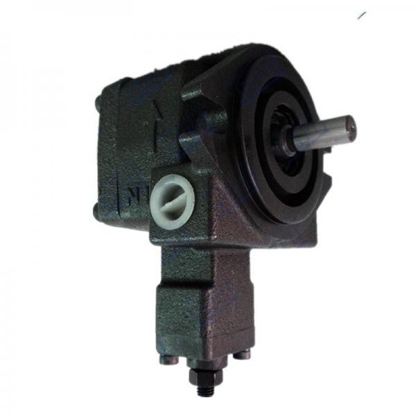 Kompass VQ25-26 Vane Pump #1 image