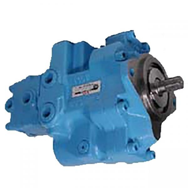 NACHI IPH-56B-50-100-LT-11 Double IP Pump #1 image