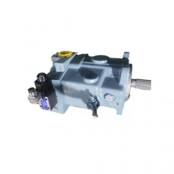 Vickers 4525V50A17-1DD22R Double Vane Pump #1 image